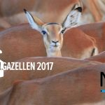 MobPro is FD Gazellen 2017